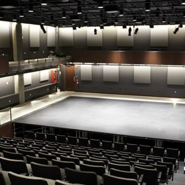 7-the-romulus-linney-courtyard-theatre-gc